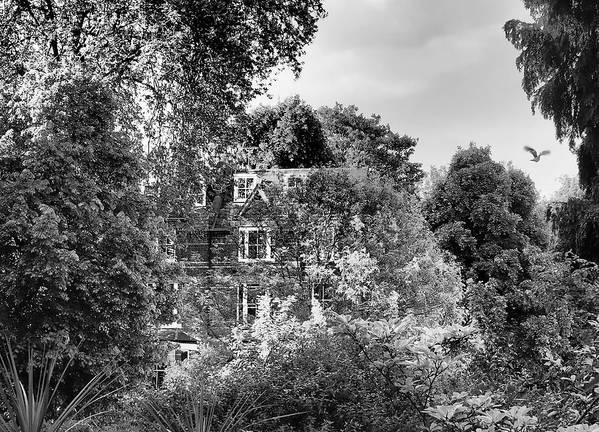 Hampstead Poster featuring the photograph Gothic Hampstead by Rona Black