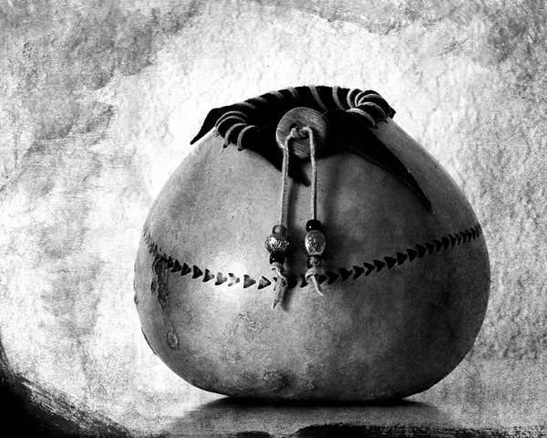 Gourd Poster featuring the photograph Gourd Art No. 1 by Carol Leigh
