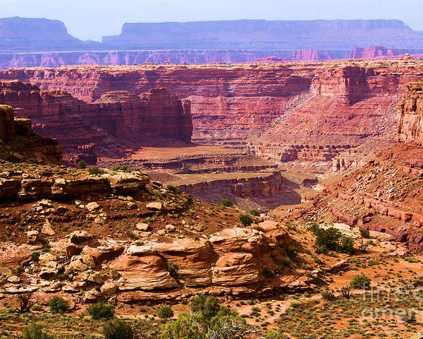 Slickrock Trail Poster featuring the photograph Grand Canyon Of Utah by Adam Jewell