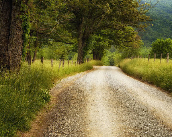 Cades Cove Poster featuring the photograph Gravel Road In The Smokies by Andrew Soundarajan