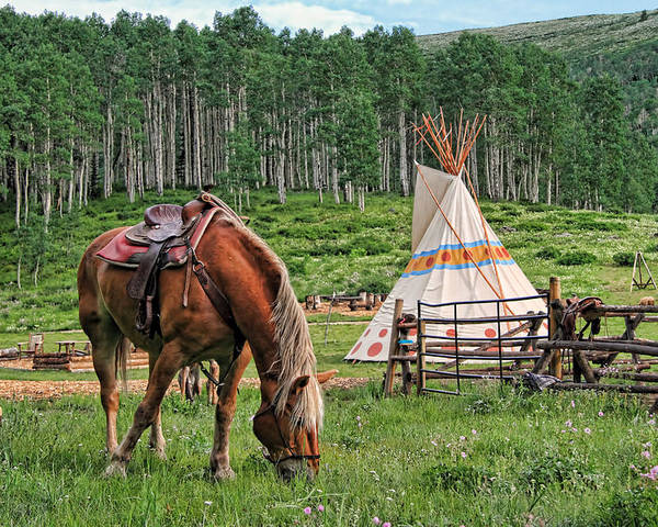 Horse Poster featuring the photograph Grazing At The Outpost by Gene Praag