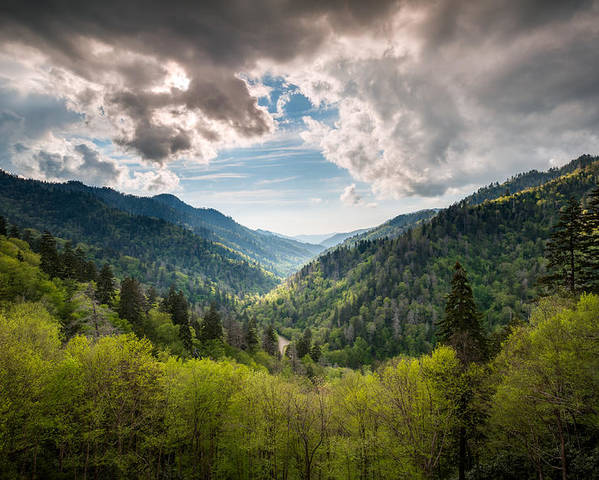 Great Smoky Mountains Poster featuring the photograph Great Smoky Mountains Landscape Photography - Spring At Mortons Overlook by Dave Allen