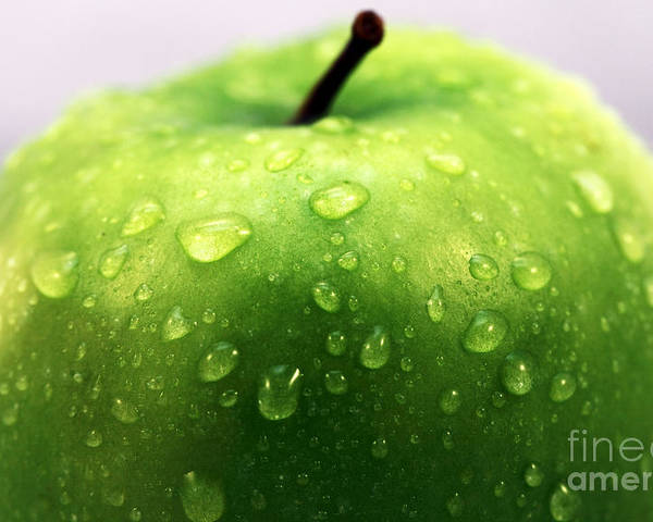 Green Apple Top Poster featuring the photograph Green Apple Top by John Rizzuto