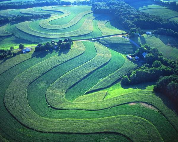 Farm Designs Poster featuring the photograph Green Farm Contours Aerial by Blair Seitz