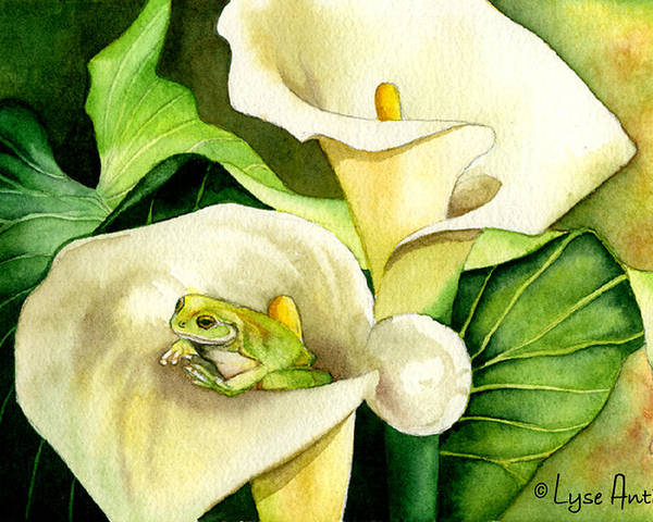 Frog Poster featuring the painting Green Peace by Lyse Anthony