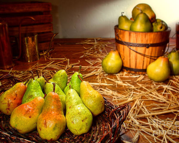 Pears Poster featuring the photograph Green Pears In Rustic Basket by Olivier Le Queinec