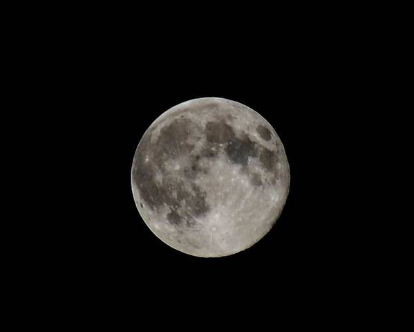 Moon Poster featuring the photograph Full Moon by Jennifer Wartsky