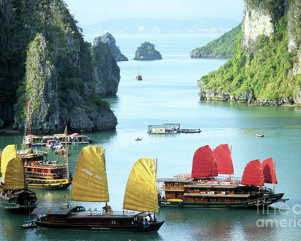 Vietnam Poster featuring the photograph Halong Bay Sails 01 by Rick Piper Photography