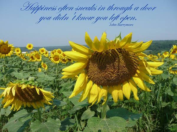 Sunflower Poster featuring the painting Happiness by Viktoria K Majestic