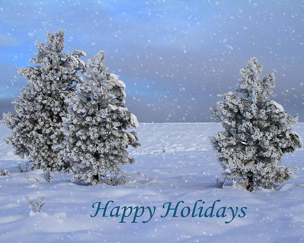 Holidays Poster featuring the photograph Happy Holidays by Donna Kennedy