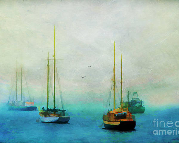 Acadia Poster featuring the photograph Harbor Fog by Darren Fisher