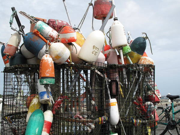Buoys Poster featuring the photograph Hard Working Buoys by Barbara McDevitt