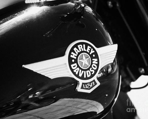 Harley-davidson Poster featuring the photograph Harley Davidson Aviation Themed Star Logo On Fat Boy Bike In Orlando Florida Usa by Joe Fox