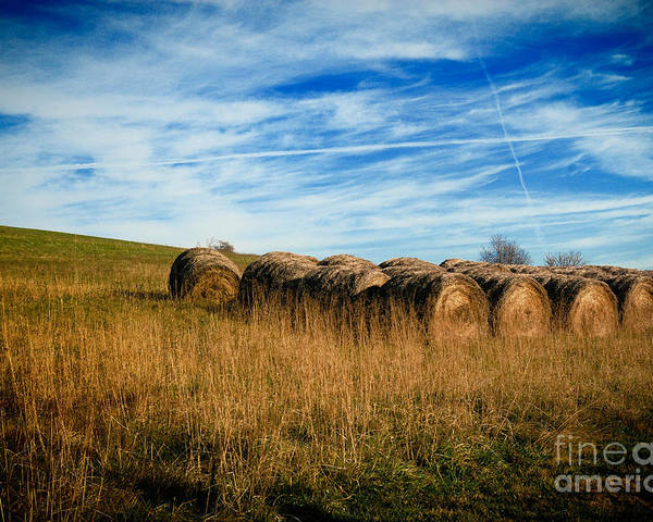Agriculture Poster featuring the photograph Hay Bales And Contrails by Amy Cicconi