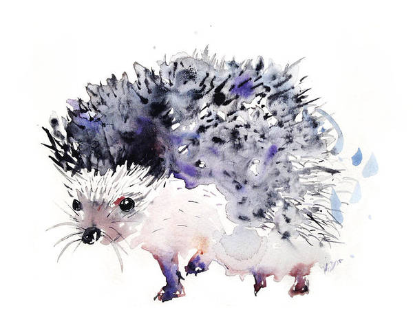 Hedgehog Poster featuring the painting Hedgehog by Krista Bros