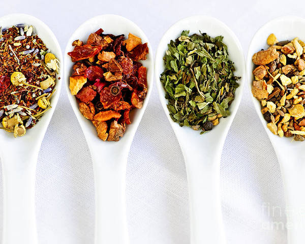 Tea Poster featuring the photograph Herbal Teas by Elena Elisseeva