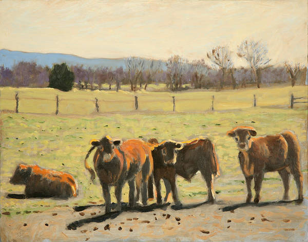 Cow Paintings Poster featuring the painting Here's Looking At You by David Zimmerman