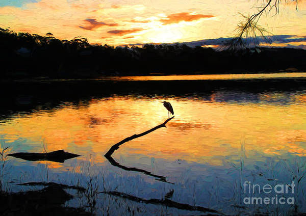 Heron Poster featuring the photograph Heron at sunset by Sheila Smart Fine Art Photography