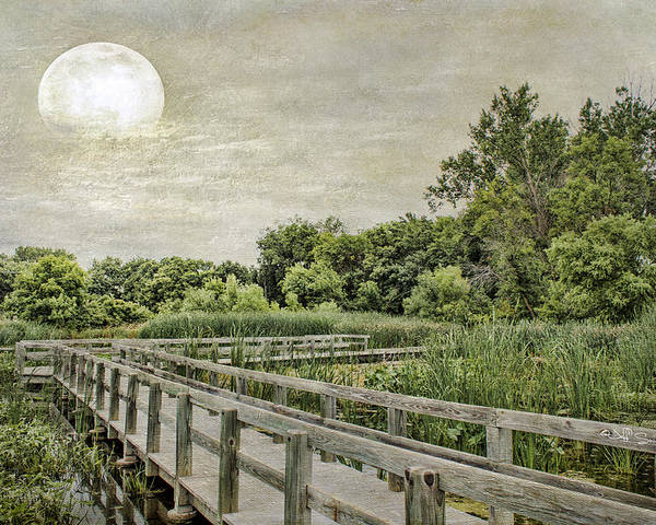 Heron Haven Poster featuring the photograph Heron Haven Boardwalk by Jeff Swanson