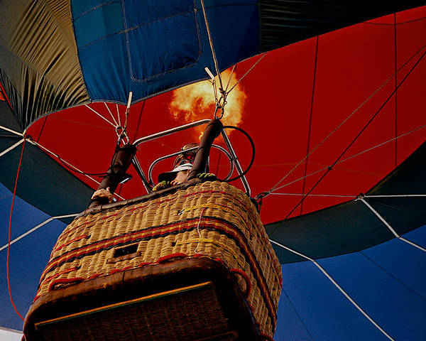 Balloon Poster featuring the photograph Higher by Lisa Fortin Jackson