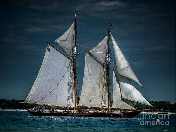 Tail Ship Poster featuring the photograph Highlander Sea by Ronald Grogan