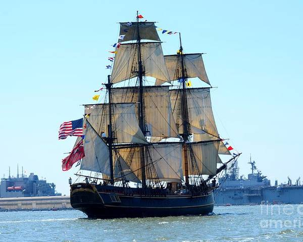 Opsail Norfolk Poster featuring the photograph Hms Bounty Ahoy by Brenda Dorman