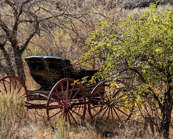 Buggy Poster featuring the photograph Horse-drawn Buggy by Kathleen Bishop