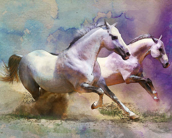 Horse Poster featuring the painting Horse Paintings 004 by Catf
