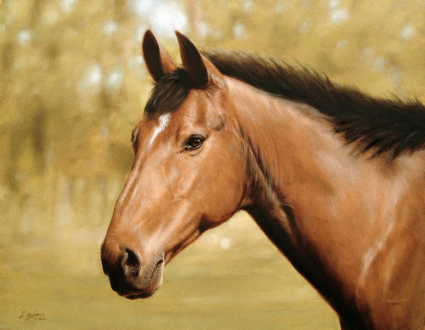Horse Paintings Poster featuring the painting Horse Portrait II by John Silver