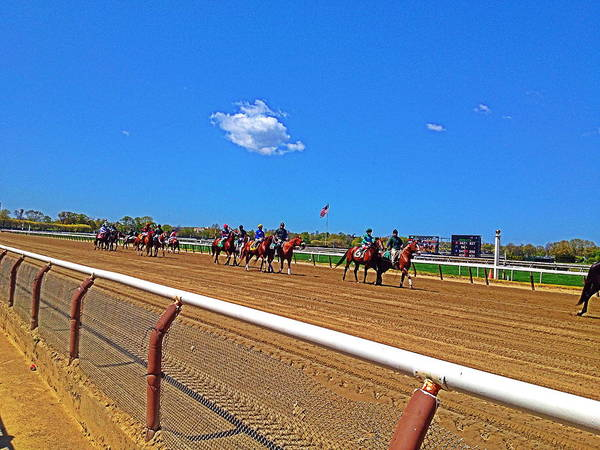 Horse Track Poster featuring the photograph Horse Races by Gilda Parente