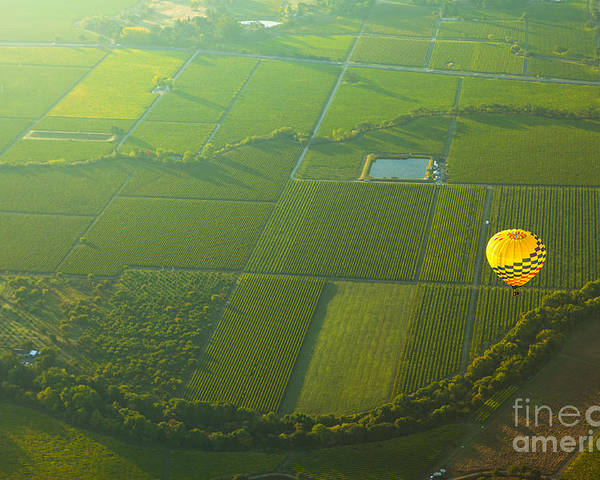 California Poster featuring the photograph Hot Air Balloon Over Napa Valley California by Diane Diederich