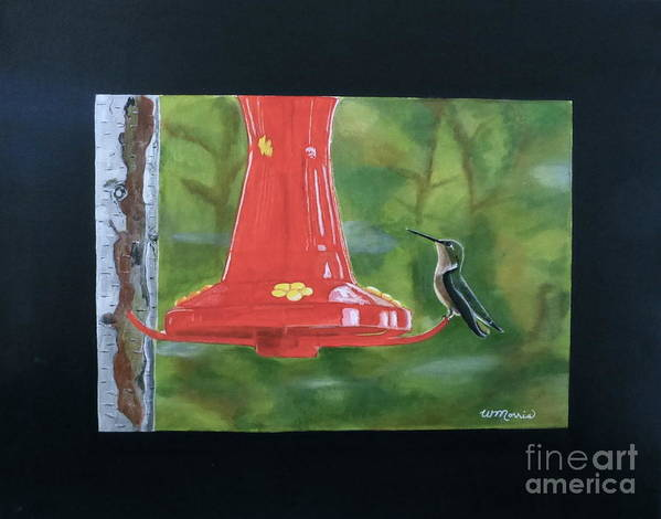 Birds Poster featuring the painting Hummingbird by Wendy Diane Morris