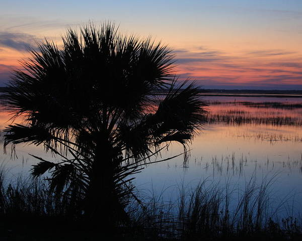 Hunting Island Poster featuring the photograph Hunting Isalnd Tidal Marsh by Mountains to the Sea Photo