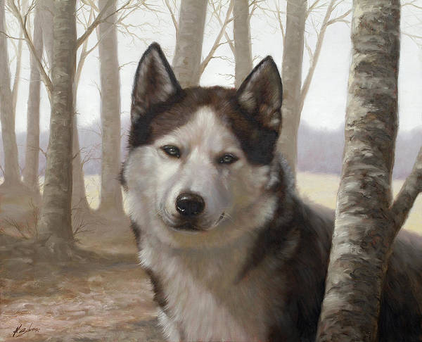 Husky Poster featuring the painting Husky In The Woods by John Silver