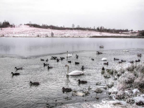 Ice Lake Poster featuring the pyrography Ice Lake by Yury Bashkin