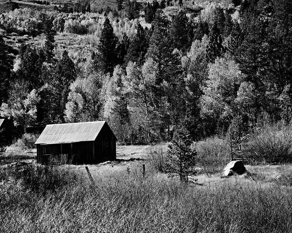 Structure Poster featuring the photograph Iconic Cabin Black And White by Michael Courtney