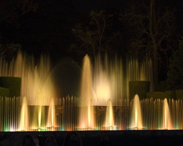 Illuminated Dancing Fountains Among Shrubbery Poster featuring the photograph Illuminated Dancing Fountains by Sally Weigand