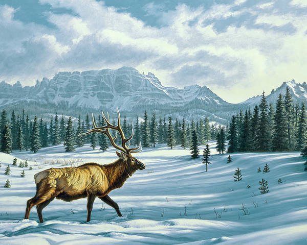Landscape Poster featuring the painting In The Absarokas - Elk by Paul Krapf
