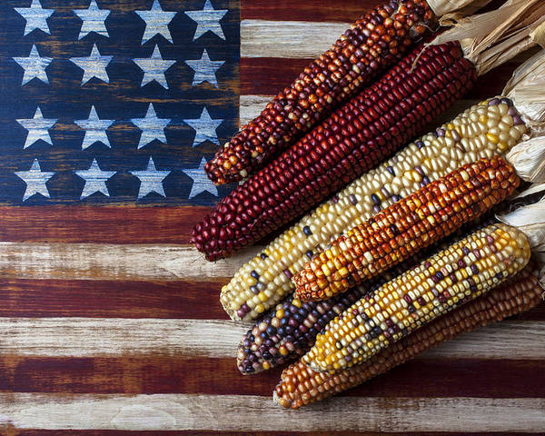 Folk Art American Flag Poster featuring the photograph Indian Corn On American Flag by Garry Gay
