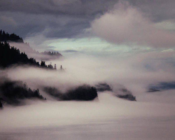 Fog Poster featuring the photograph Inside Passage In The Mist by Vicki Jauron
