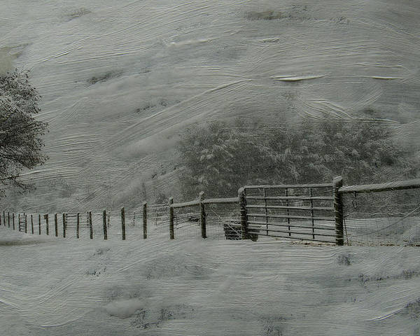 Snow Poster featuring the photograph January Storm by Kathy Jennings