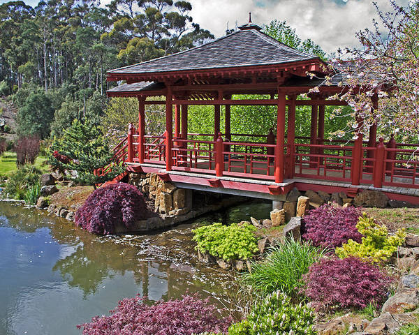 Gardens Poster featuring the photograph Japanese Bridge At Emu Valley by Tony Crehan