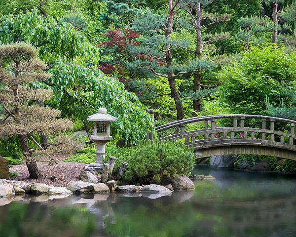 3scape Photos Poster featuring the photograph Japanese Garden by Adam Romanowicz