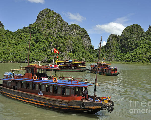 Halong Poster featuring the photograph Junk Boats In Halong Bay by Sami Sarkis
