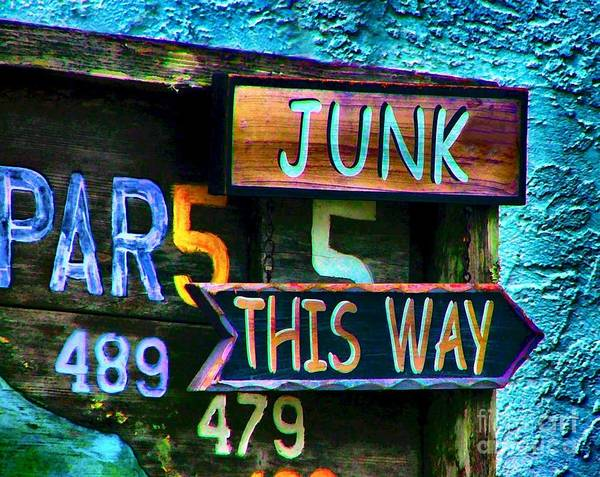 Sign In Florida Poster featuring the photograph Junk This Way by Julie Dant