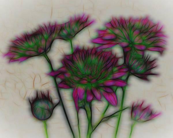 Art Poster featuring the photograph Kaleidoscope Bouquet by Judy Vincent