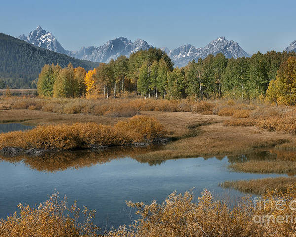 Grand Teton Poster featuring the photograph Kiss Of Fall In The Grand Tetons by Sandra Bronstein