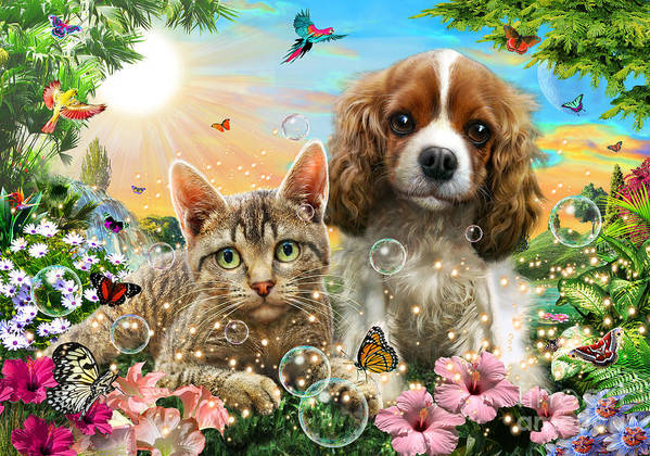 Adrian Chesterman Poster featuring the digital art Kitten And Puppy by Adrian Chesterman