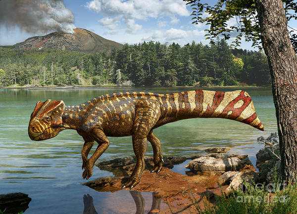 Dinosaur Digital Art Poster featuring the digital art Koreaceratops hwaseongensis by Julius Csotonyi