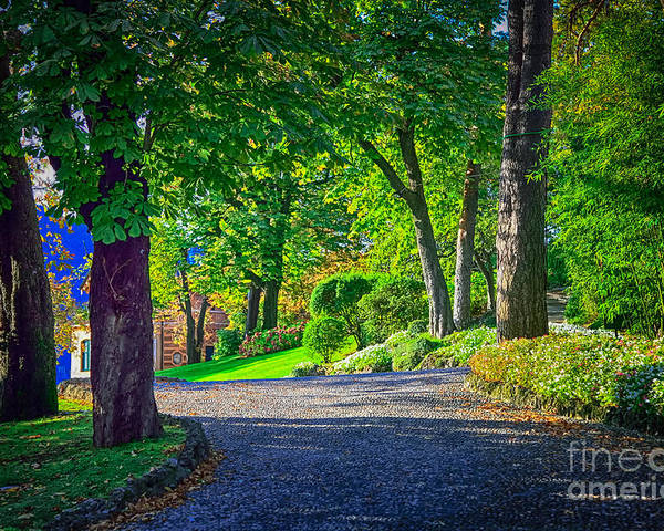 Sunlight Filtering Through Trees Poster featuring the photograph Lake Como Path by Kate McKenna